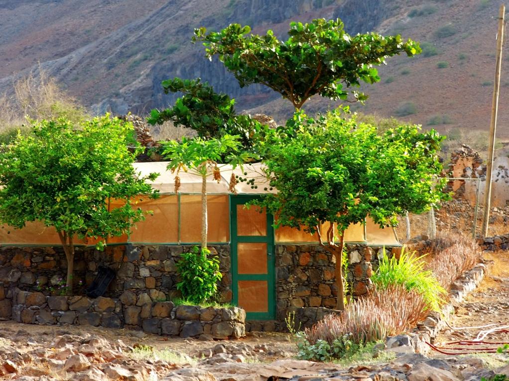 Gewachshaus Garten Sao Nicolau Kapverden